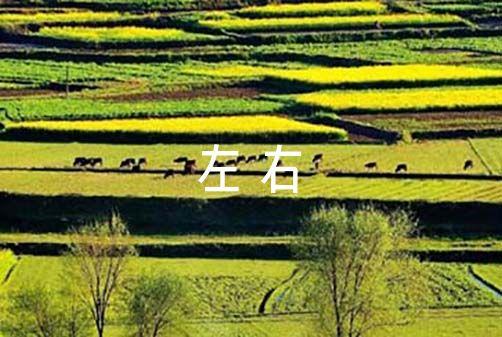 关于观看辉煌中国的观后感800字左右【十五篇】